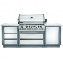 Napoleon Oasis 100 - Prestige PRO 665 - Kitchen BBQ w/ Free Cover