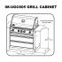 Napoleon Oasis 200 - LEX605 - Island Gas BBQ - Free Cover